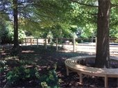Sunny Park with Trees, Round Bench ad Wood Fence