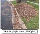 Image of leafs on the curb