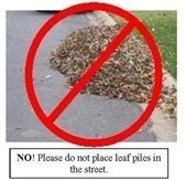 Image of Do not place leaf piles in the street