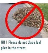 leaves NO
