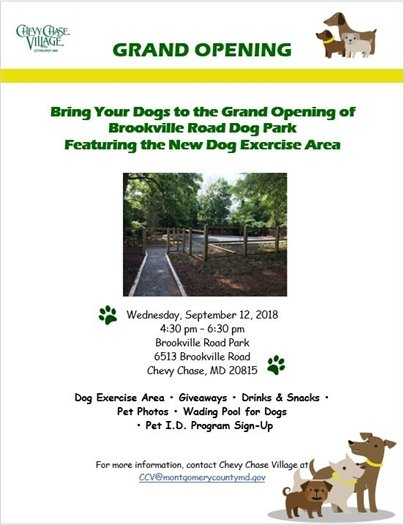 Green and Yellow Dog Park Grand Opening Flyer