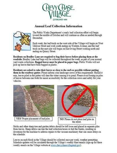 Annual Leaf Collection