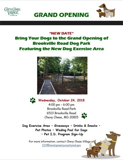 Grand Opening Dog Park Flyer