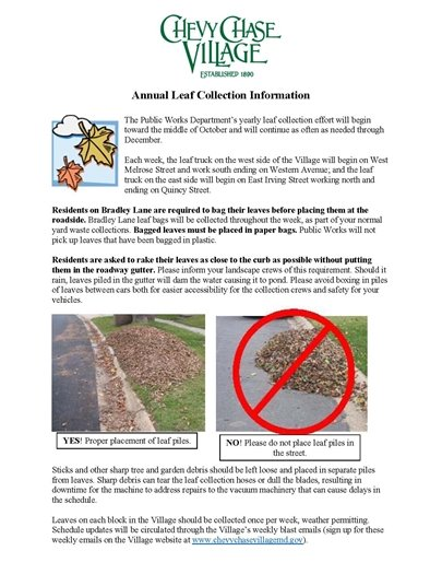Annual leaf Collection Information