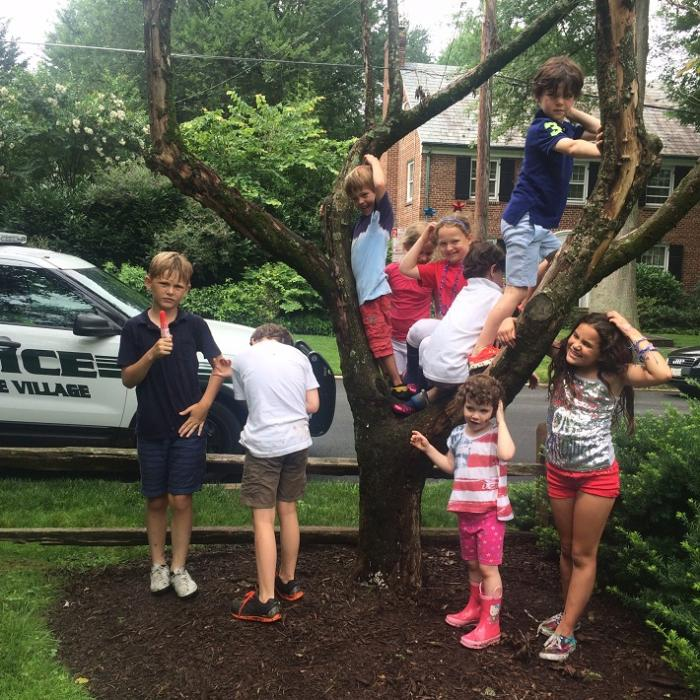 Police vehicle and young people climbing tree